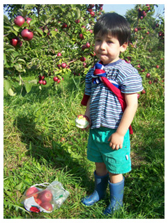 Paradis des Fruits Dunham, autocueillette, ecologique, verger, Fraise, framboise, bleuet, cassis, groseille, gadelle, cerise griotte, mure, pomme, poire, prune, miel, fleur, Honeycrisp, Les Miels Naturels Charbonneau, producteur, petits fruits, agrotourisme, produit du terroir, eco-friendly, orchard, pick your own, u-pick, Strawberry, raspberry, blueberry, black currant, gooseberry, sour cherry, blackberry, apple, pear, plum, honey, flower, berry, environmentally friendly, producer, local product, produit local, cantons de l'est, eastern township, monteregie, bleuetiere